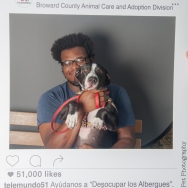 20160723-ClearTheShelters-12