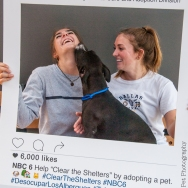 20160723-ClearTheShelters-20
