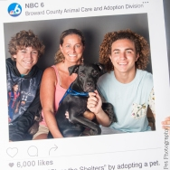 20160723-ClearTheShelters-24