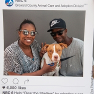 20160723-ClearTheShelters-27
