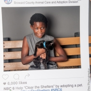 20160723-ClearTheShelters-34